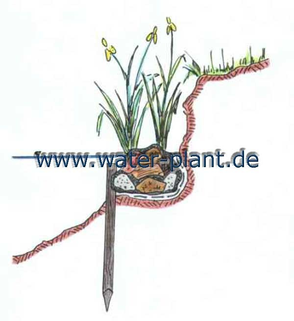 bepflanzte Steinwalze