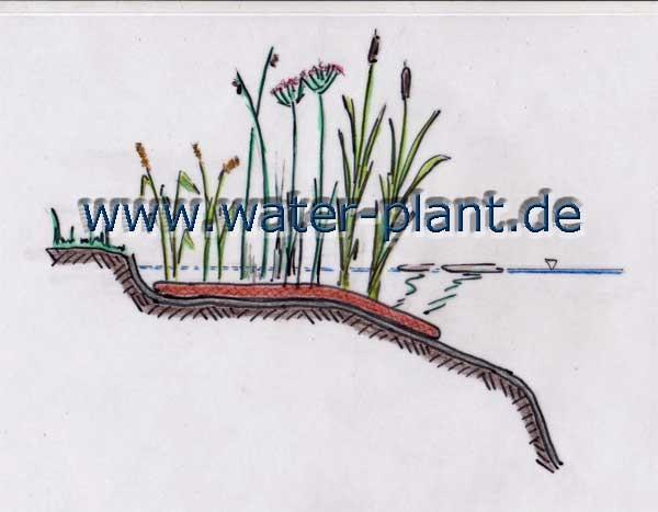 Pflanzmatten (0,5 m oder 1,0 m breit) bieten vielfältige Bepflanzungsmöglichkeiten