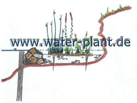 Steinwalze mit Röhrichtmatte auf Kiesberme
