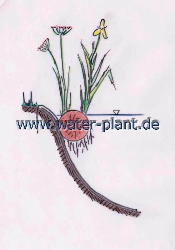 aufgehängte Pflanzrolle (20 cm Durchmesser)