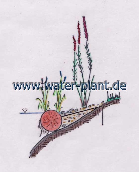 Pflanzrollen (20 cm Durchmesser) schaffen eine natürliche Uferzone