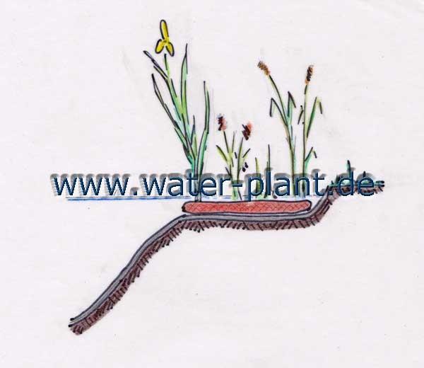 die Sumpfzone ganz einfach mit Pflanzmatten (0,5 m oder 1,0 m breit) bepflanzen