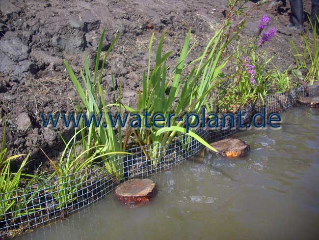 Uferbefestigung nach dem Einbau