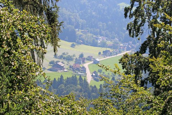 Panorama vom Baumwipfelpfad Neckertal, in Mogelsberg