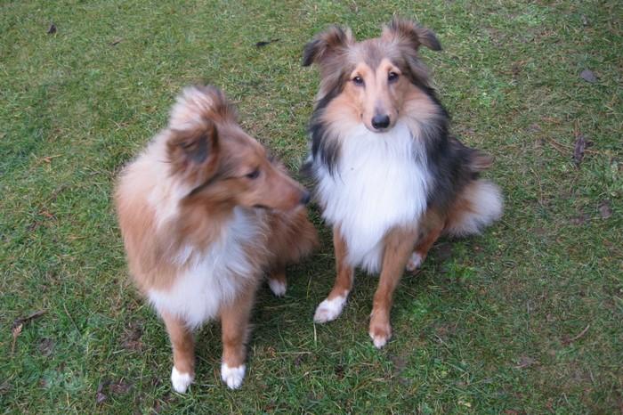 Nando (Nicki) und Maddox