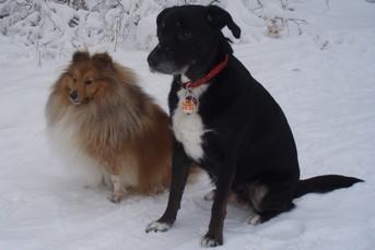 Xavier Linus im Winterpelz mit seiner Freundin Bessy