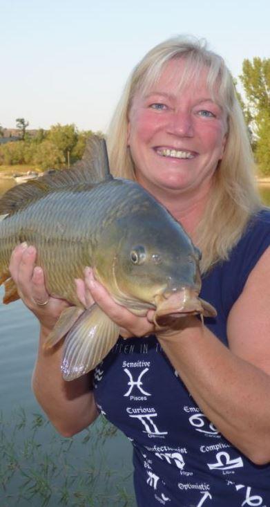 Rüsselfisch Karpfen angeln