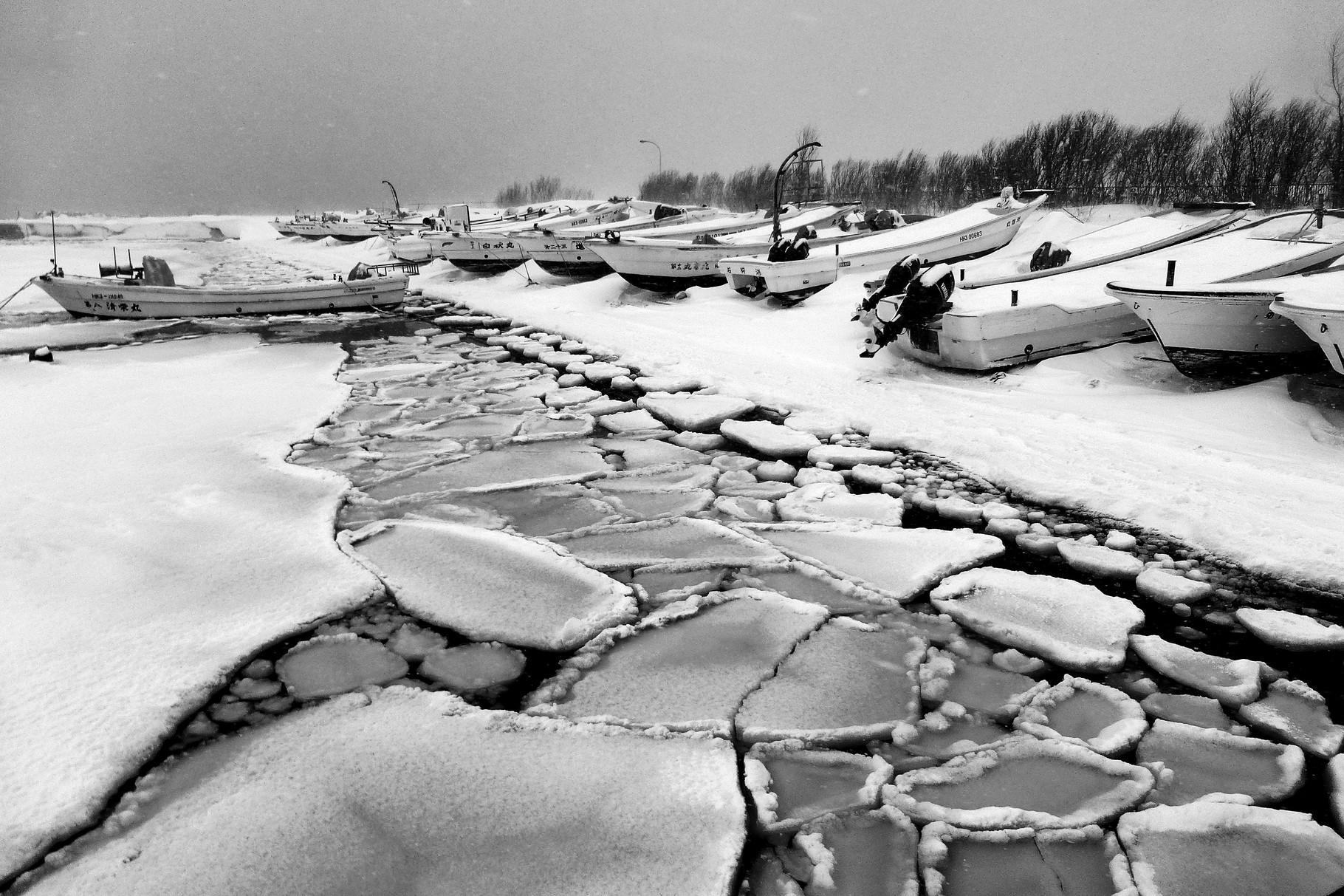 準クランプリ 『蓮葉氷の海』 紅露 雅之