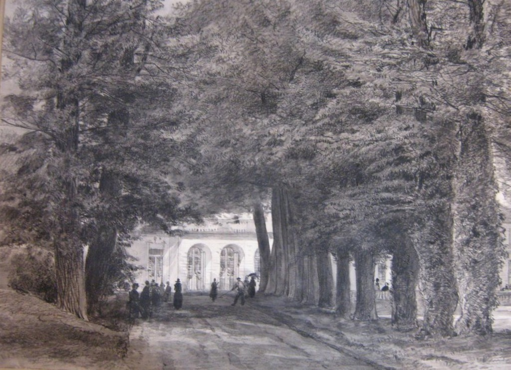 Armand Cassagne inv 737. Avenue de Sully. Parc de Fontainebleau