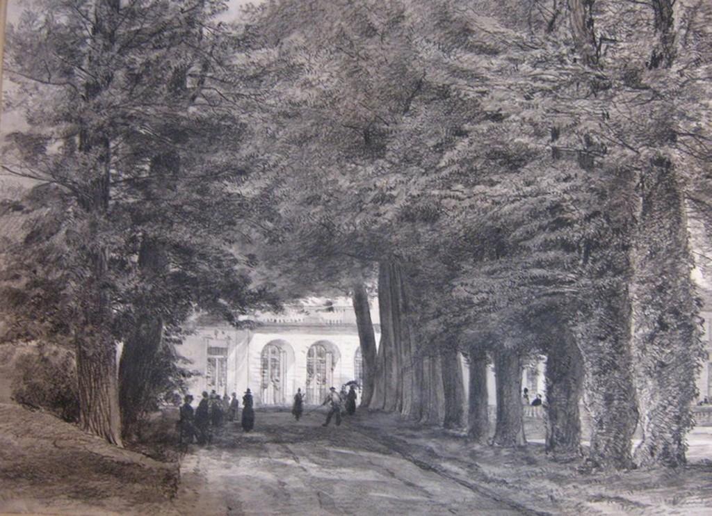 Armand Cassagne inv 737. Avenue de Sully. Parc de Fontainebleau