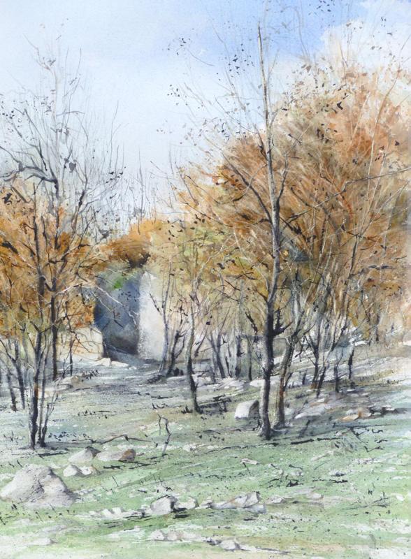 La pinède après l'incendie - n°13 - 36.5x56  collection privée (2013)