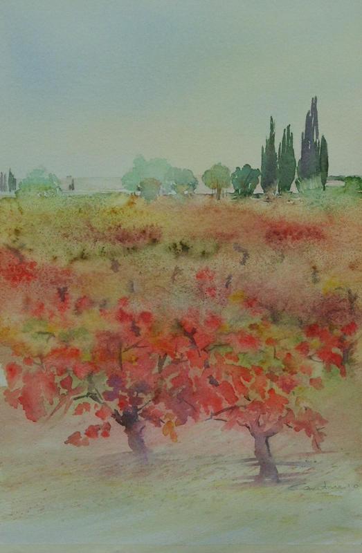 31-Vignes en automne 18x 27  collection privée(2010)