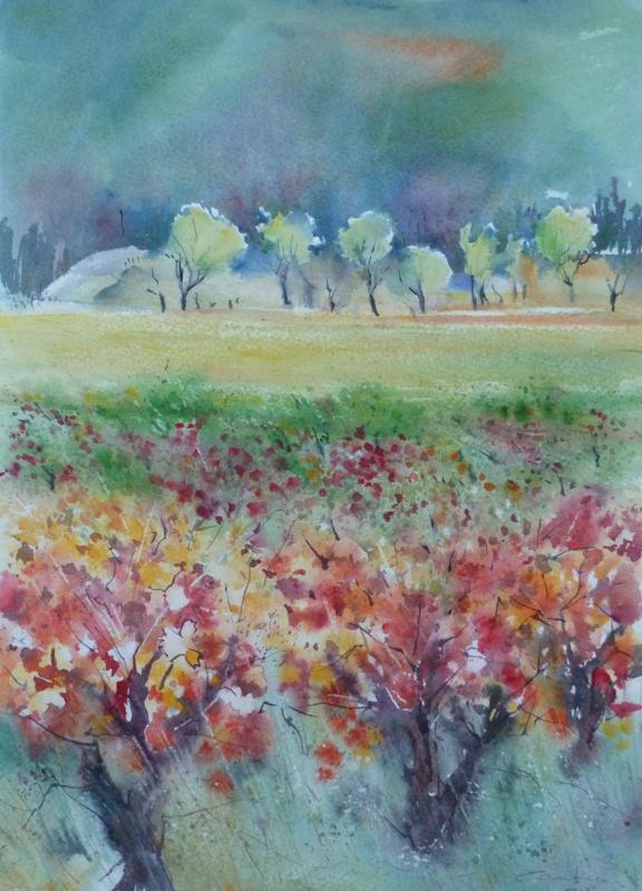 26-Vielles vignes à Moujan 34x40 *(2010)