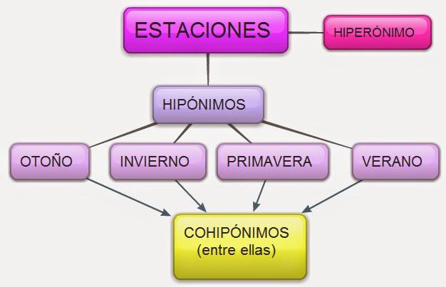 Hiperónimos e hipónimos.