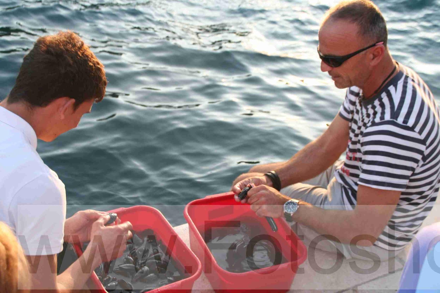 Kapitän und Schiffsjunge putzen Muscheln