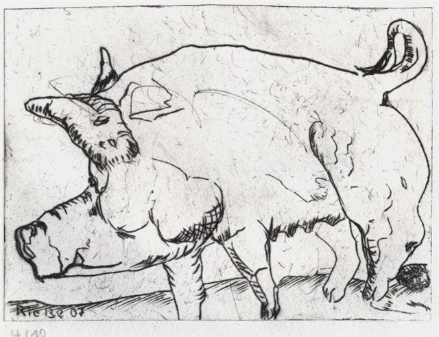 Schwein 2007