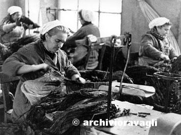 Chiaravalle (Ancona), Gennaio 1965 - Donne alla fabbrica manifattura tabacco