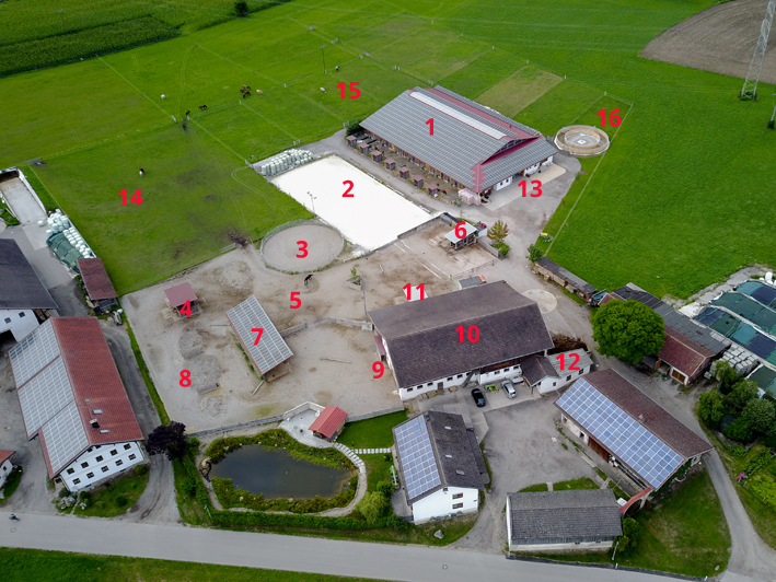Pferdehof, Reiterhof, Aktivstall, Offenstall, Emmerting, Ribesmeier, Mitterlehner, Stall