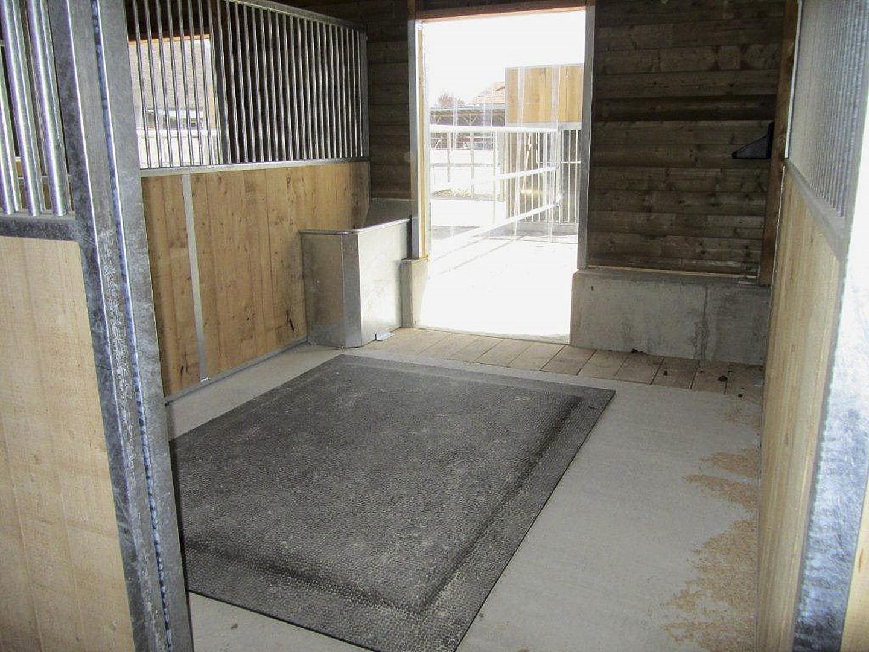 Jede Box ist mit einem HIT-Softbed ausgestattet und wird mit Tierwohl-Spänen eingestreut.