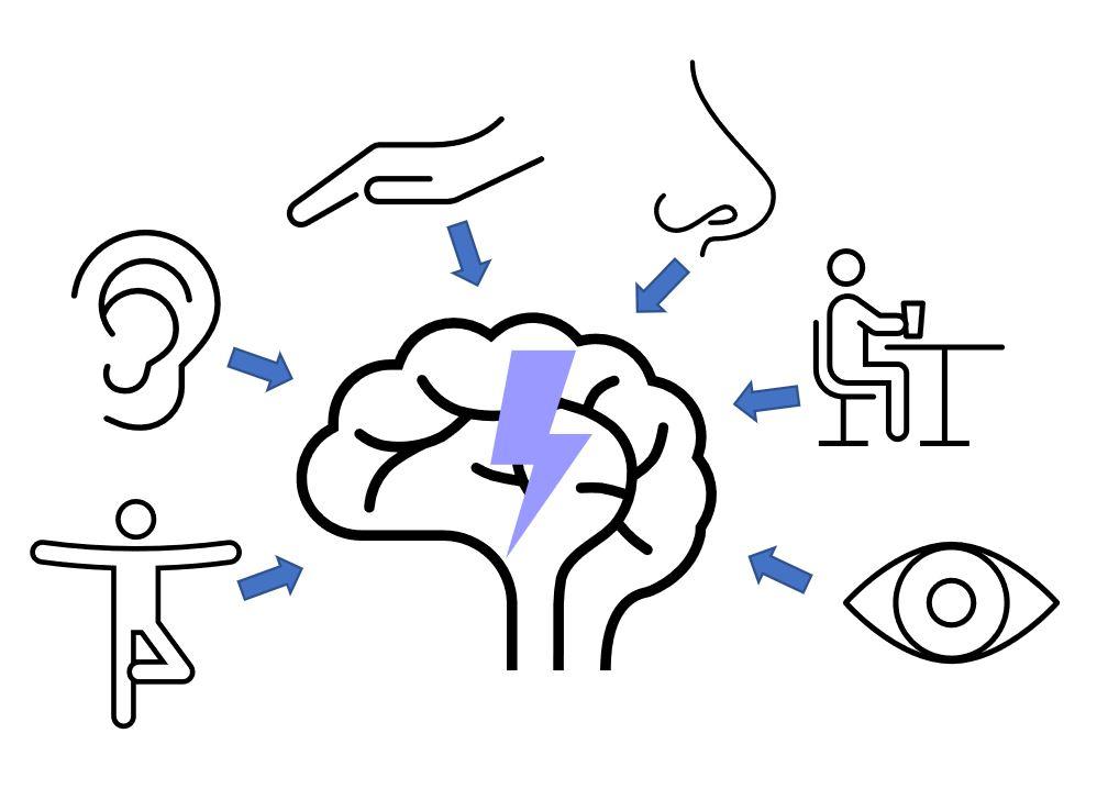 Online-Live-Seminar Kopfschmerz: Augen- und Gleichgewichtstests