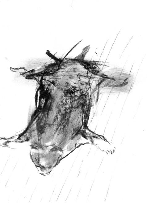 Untitled-            -graphite, pen, carbon on paper-     -2004-     -21x29cm