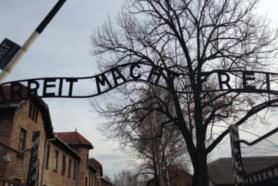 Ciudad Vieja de Cracovia y Auschwitz-Birkenau