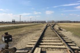 Auschwitz-Birkenau y Mina de Sal de Wieliczka - EN EL MISMO DÍA