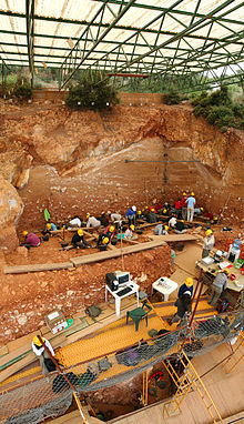 Excavación del yacimiento de Gran Dolina, en Atapuerca (Burgos). El nivel TD6 donde aparecieron los restos de Homo antecessor es el que se está excavando justo por debajo de los andamios. Foto (cc): Wikipedia.org