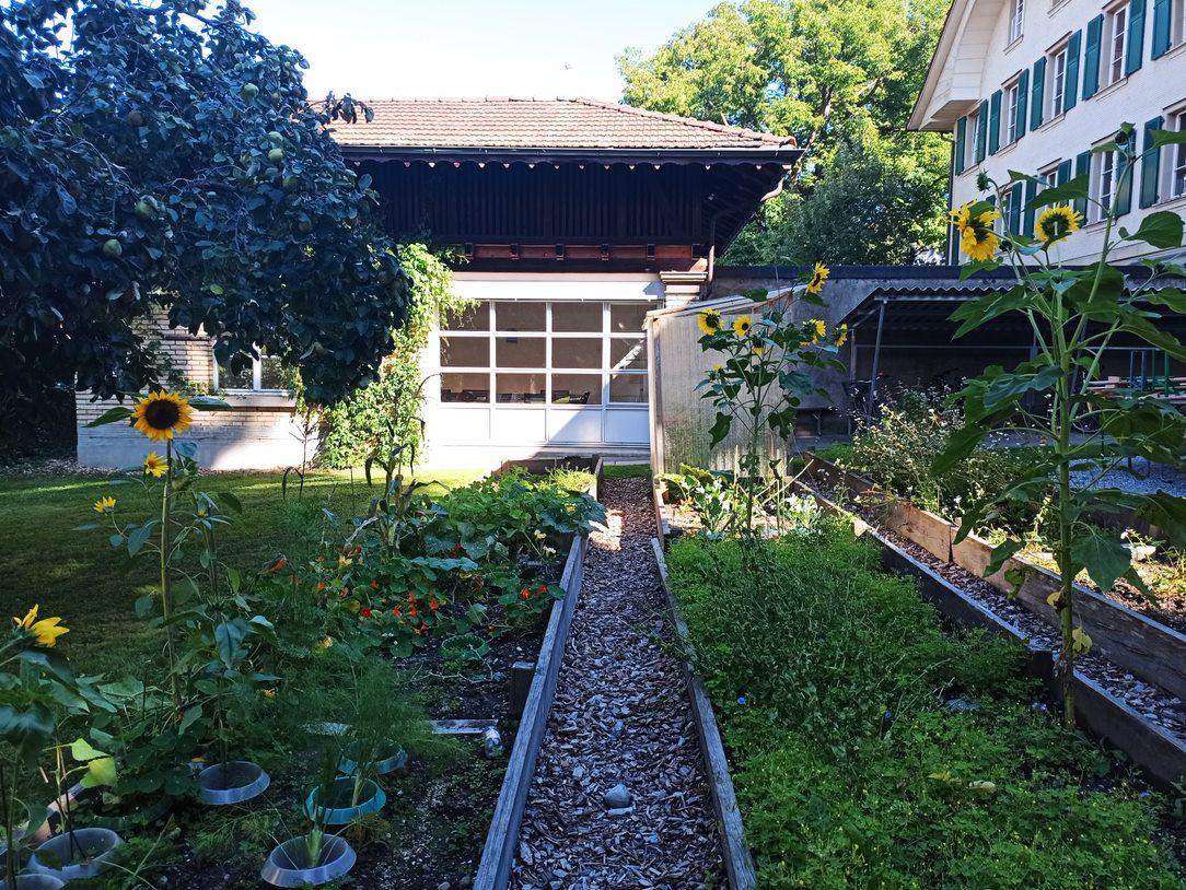 Workshop Wildbienenhaus