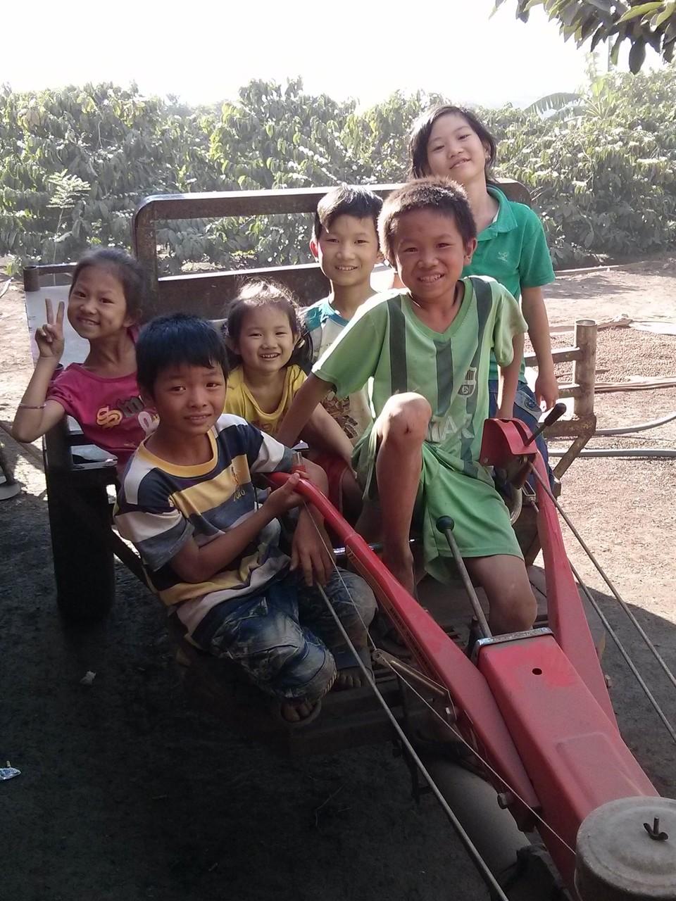 children on coffee farm in daklak