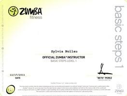 Zumba® Fitness B1 Lizenz