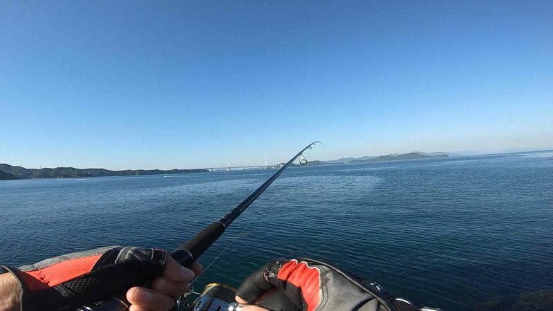 潮目 淡路島 丸山公園で青物狙いが良型シーバス釣れました