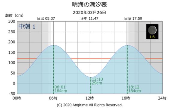 シーバスナイトゲーム ハクパターンのシーバス釣り 東京湾奥一級河川 中川下流で良型60cmゲット 釣り松TV