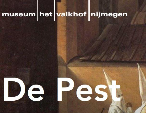 De Pest in Museum Valkhof