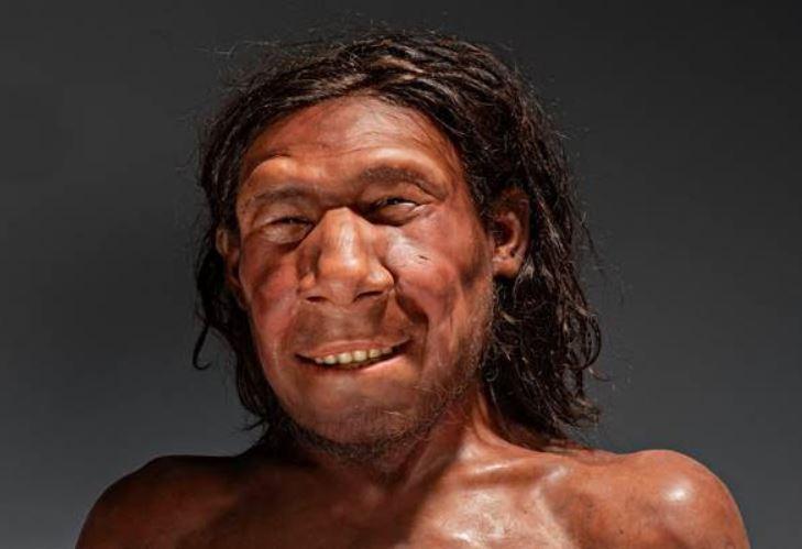 Neanderthaler 'Krijn' krijgt gezicht
