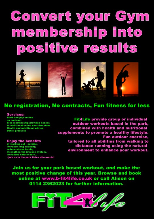 fit 4 life flyer