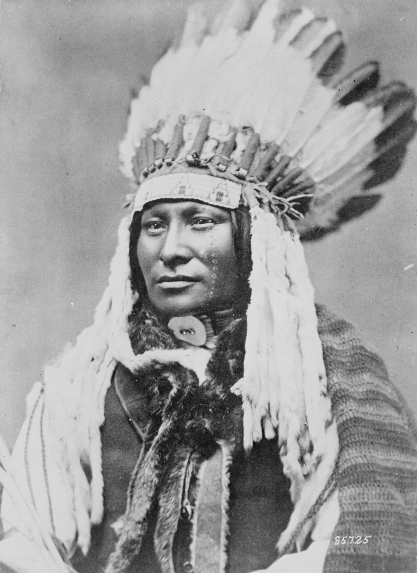 Rain in the Face, Hunkpapa Lakota