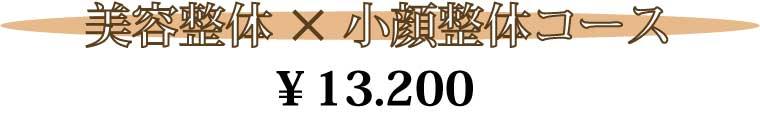 横浜線町田駅、淵野辺駅の隣古淵駅からすぐ整骨院よりも丁寧な施術、塚原バランス整体院