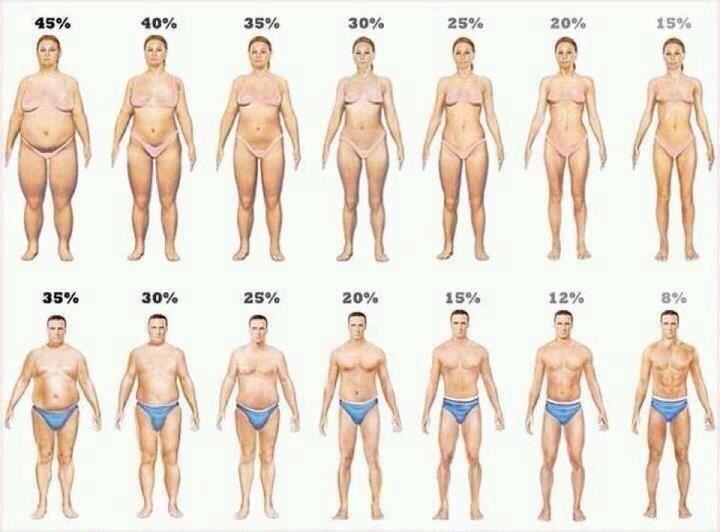Körperfett KFA Körperfettanteil abnehmen