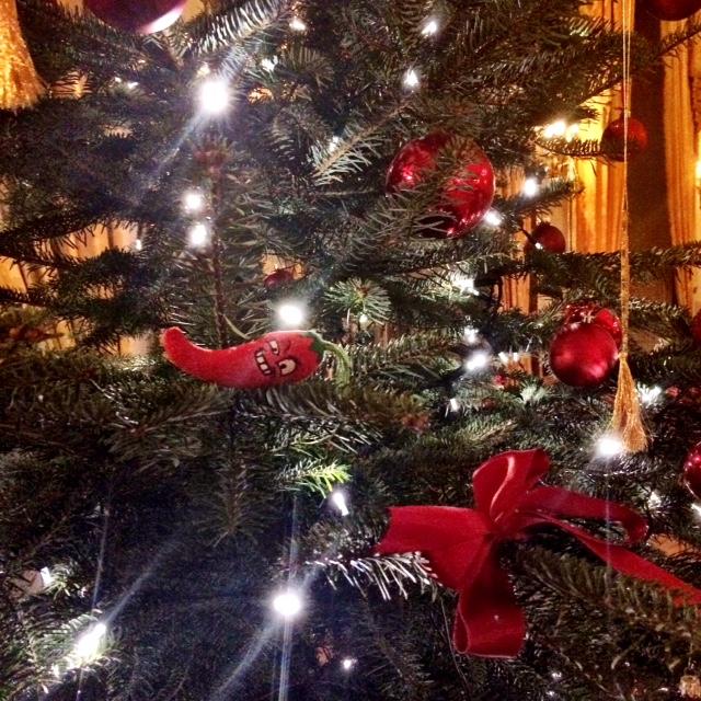 Alma Cilurzo Weihnachten Sängerin für Ihren Anlass Weihnachtsessen Luzern Herrenschützen Business Event Zürich Basel Bern