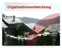 organisatinsentwicklung
