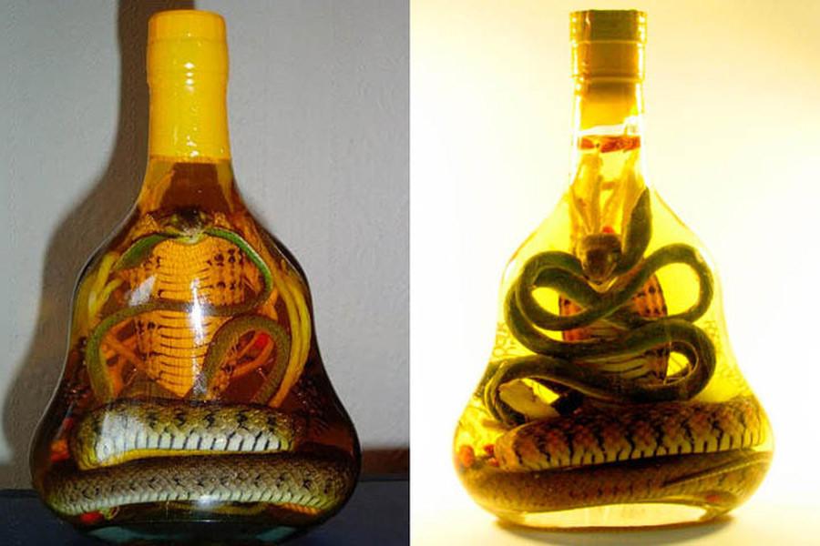змеиные ликеры