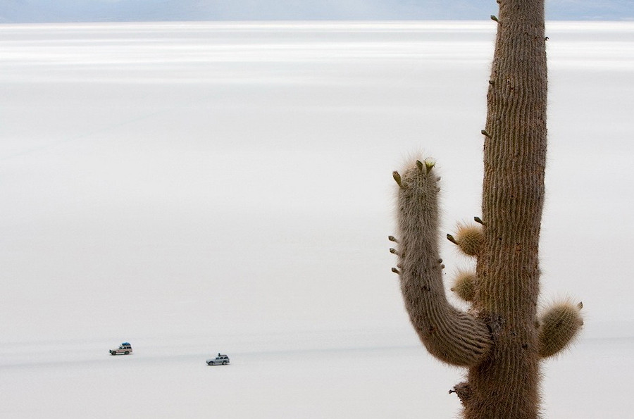 соль Солончак Уюни Salar de Uyuni