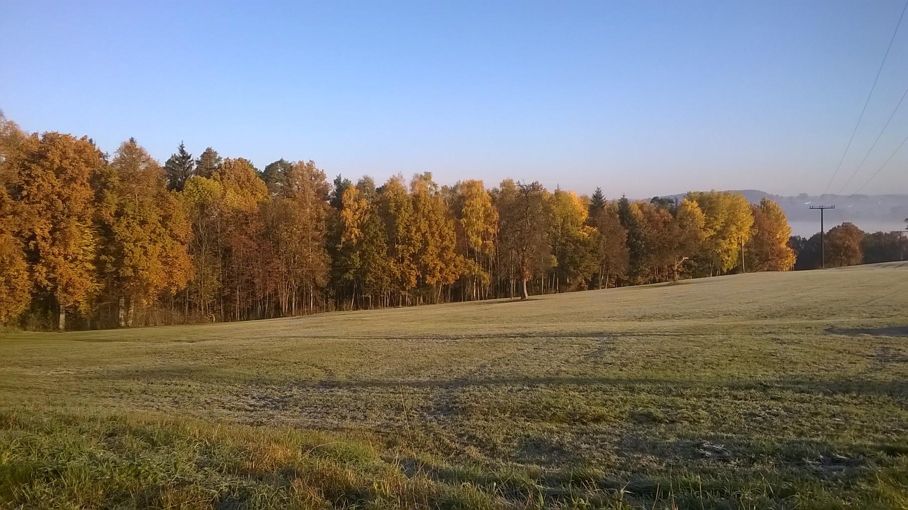 Herbstimpression 1 - meines Coaching-Aussenbereichs