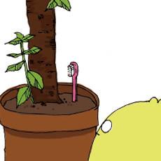 ♭月α日 庭の鉢植えに、凛と立つ歯ブラシ。