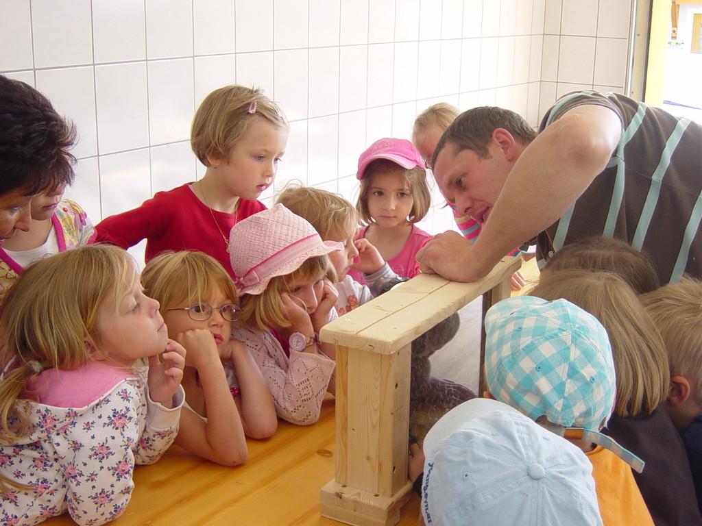 der Bienenschaukasten faszinierte die Kinder