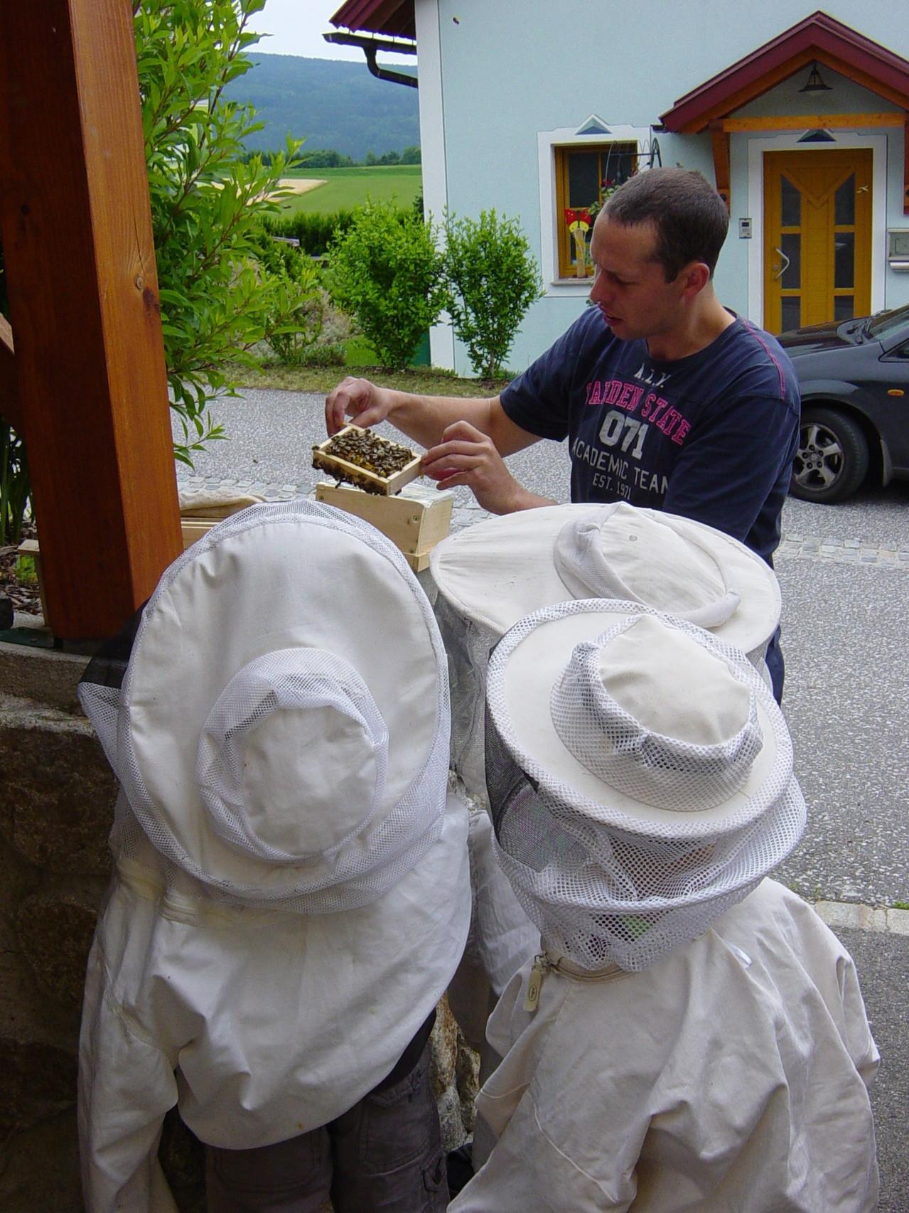 mit Schutzbekleidung zum offenen Bienenstock