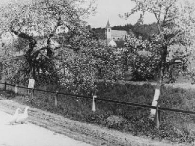 Hörersdorf: Ansicht vom Unterort auf den Kirchenberg - Foto v. L. Zieger