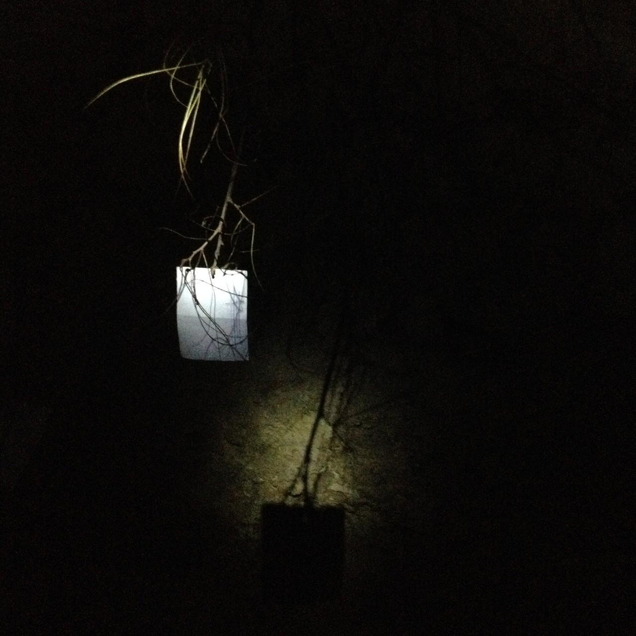 """Installation WÄRMEPOL/ idea generator - """"Galerie Podzemka"""""""