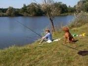 Fischen am See hinterm Haus